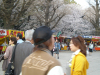 Sakurabanngai2